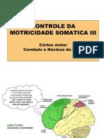 Controle_motricidade_voluntaria