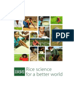 Rice science for a better world