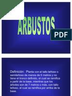 arbustos1[1]