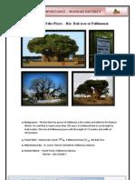 Mannar Resource Profile - Page 1 - Bio bab tree at Pallimunai