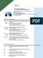 Curriculum Vitae 2011b