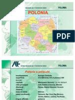 2 Intervento Alfonsi ICE Polonia