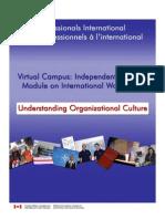 Understanding Organizational Culture-En
