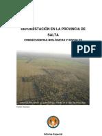 Informe deforestación Defensor del Pueblo 2009
