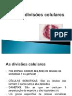 aula 12 - As divisões celulares
