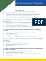 Cuestionario Profesional 2007