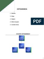 Curs2R ML Cetogeneza Handouts