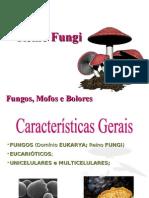 Reino Fungi - Etapas 3 e 4