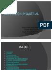 Revolucion Industrial Auto Guard Ado]
