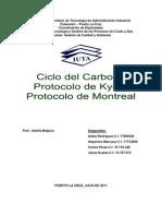 Ciclo Del Carbono-protocolo de Kyoto-protocolo de Montreal