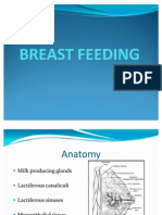 Breast Feeding-physiology of Lactation,Composition of Breast Milk,Colostrum,Initiation &