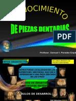 Reconocimiento Pzas Dents. 2010 II