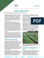 Organic Spelt Production