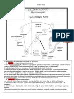 HYMENOLEPIOSIS Y ENTEROBIOSIS..