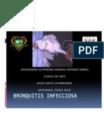 BRONQUITIS INFECCIOSA