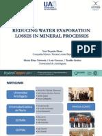 Presentación  HydroProcess 2011_PDF