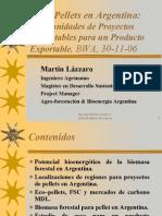 WEINER & ASOCIADOS-Martin Lazzaro-Bioenergy Wo