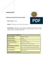 Plan+de+Marketing+Oregano
