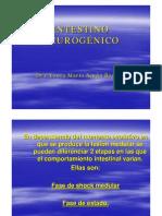 instestinoneurogenico