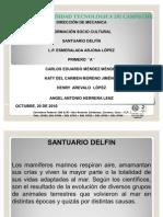 PROYECTO DELFIN
