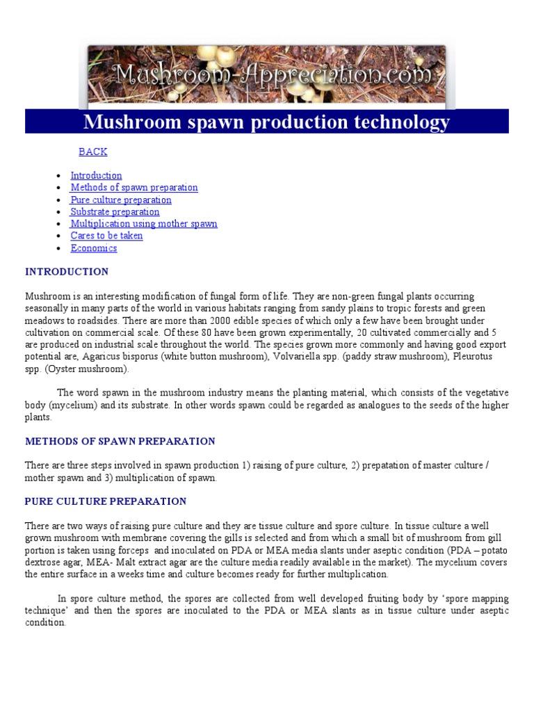 Mushroom Spawn Production Technology | Mushroom | Spawn