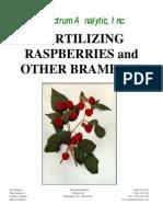 Fertilizing Brambles