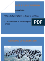Formation of a Public Company