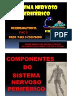 (Microsoft PowerPoint - SISTEMA NERVOSO PERIFÉRICO 1 [Modo de Compatibilidade])