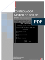 PPI informe