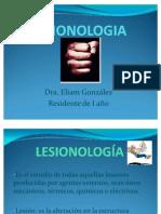 Lesionología Eliam