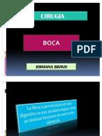 3 Boca - Johanna Bravo