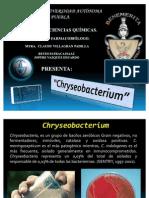 Tarea 3 - Chryseobacterium
