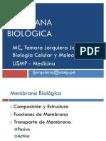 Membrana_Biologica_2011_parte_1