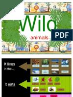 PPT Wild Animals 1 elementary level