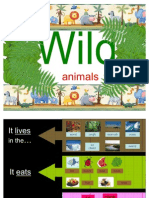 PPT Wild Animals 1 elementary level