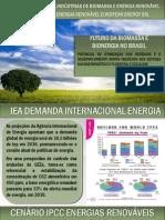 Futuro Biomassa e Bioenergia News
