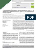 Expression of an Optimized Argopecten Purpuratus Antimicrobial Peptide