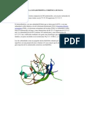 gonadotropina corionica humana para adelgazar