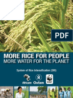 More Rice for People More Water for the Planet Sri