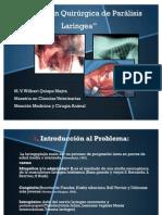 Resolución Quirurgica de Parálisis Laringea