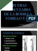 Pruebas Musculares de Rodilla, Tobillo y Pie