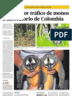 Acusan por tráfico de monos a laboratorio de Colombia