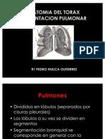 SEGMENTACION PULMONAR