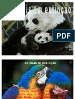 animais em extinção (1)
