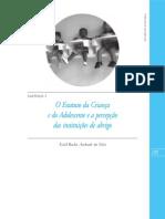 O Estatuto da Criança e do Adolescente e a percepção das instituições de abrigo
