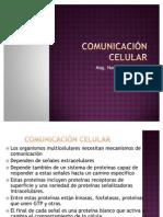 Comunicacin celular
