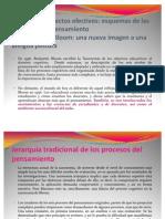 Propuesta Pedagógica Colegio Acrópolis 2011 v1