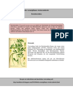 Alte Arzneipflanze wiederentdeckt