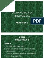 PBHI 19ago S2 Práctica 2