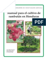 Manual Rambutan